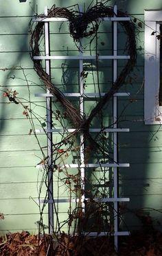 Nature Grape Vines Heart Peace Man ☮ Valentine Pics, Valentine Picture, Grape Vines, Ladder Decor, Peace, Nature, Naturaleza, Valentines Day Photos, Vineyard Vines