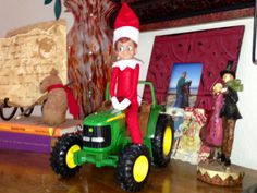 Elfie helping out on the farm...