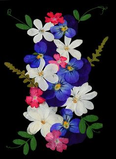 Making Pressed Flower Art and Crafts: Pressed flowers Images found on Photobucket