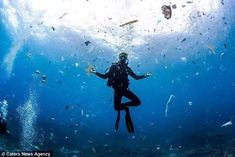 Aissa Paronen pictured surrounded by rubbish while diving in Indonesia, in a series of horrifying images by photographer Jukka Saarikorpi Ocean Pollution, Plastic Pollution, Manta Ray, Plastic Waste, Marine Life, Sea Creatures, Climate Change, Diving, Planets