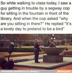 Tumblr funny @carly k. Gossett.   Yup. That seems like a perfectly reasonable reason to sit in the fountain...