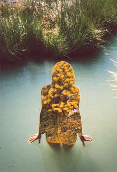 . yellow flowers, collag, flower children, river