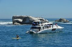 Charter Boat, Fancy Houses, Cape Town, Nice Things, Bobs, Vacation, Gallery, Image, Extravagant Homes