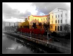 Itziar Zubieta nos ha enviado esta bonita fotografía.