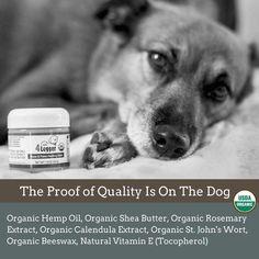 USDA Certified Organic Healing Balm for Dog Nose and Paw Pads Certified Organic Heilbalsam für Hundenasen- und Pfotenpolster Natural Vitamin E, Dog Nose, Natural Preservatives, Natural Sunscreen, Insect Bites, Healing Herbs, Hemp Oil, Your Dog, The Balm