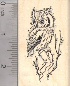 Screech Owl Rubber Stamp Roosting in Tree -- Find out more about the great product at the image link.