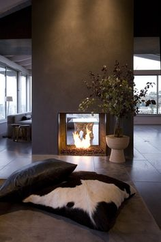 Modern Chic Interior.....love the see through fireplace, accessible from both rooms.