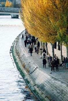 River Seine, Paris; in the fall - by bendisdonc paris, river sein, autumn, fall, france, french, places, travel, rivers