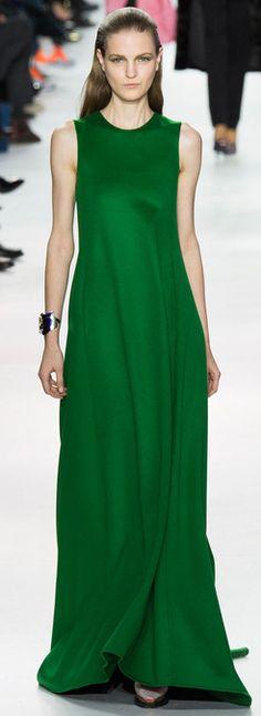 Fall 2014 RTW Christian Dior