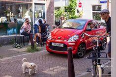 22 07 2017, 12:15  The Netherlands, Amsterdam, Binnen Dommersstraat, Vinkenstraat   © Thomas Schlijper