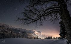 Silence of a winter's night