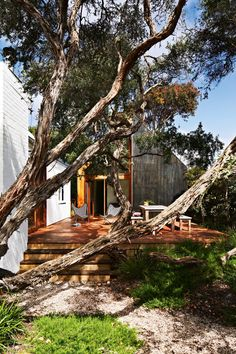 This little coastal home, previously a small run-down shack, has been made-over by architects Kate Fitzpatrick and Ben Stibbard of Auhaus. Its now a bright & fresh looking four bedroom home … photos by armelle habib Australian Garden, Australian Homes, Outdoor Spaces, Outdoor Living, Sydney Gardens, Armelle, How To Attract Birds, Interior Design Photos, The Design Files