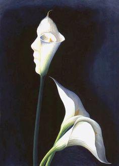 Flower Face Optical Illusion