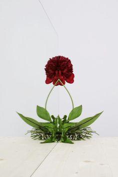 Jan Von Holleben - Wonderflowers - Peowaxflo