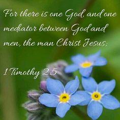 1 Timothy 2 :5 KJV