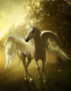 Pegasus Flying horse