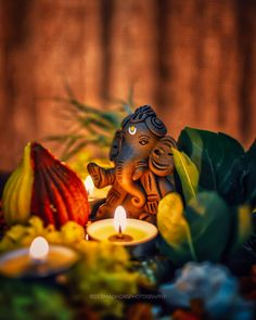 Make this Ganesha Chathurthi 2020 special with rituals and ceremonies. Lord Ganesha is a powerful god that removes Hurdles, grants Wealth, Knowledge & Wisdom. Ganesh Lord, Jai Ganesh, Shree Ganesh, Ganesha Art, Ganesh Statue, Shri Ganesh Images, Ganesha Pictures, Lord Krishna Images, Radha Krishna Images
