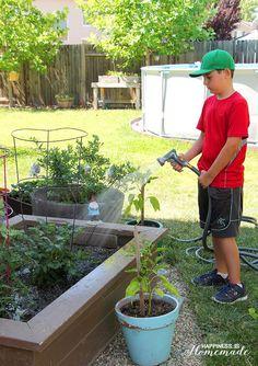 Tips to Prepare Your Garden for Growing Season