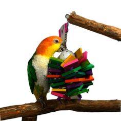 Bella BirdCo Kito Toy – 4 Strand Bird Toy « Pet Lovers Ads