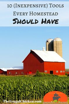 Homestead tools make it easier to be successful on your farm. Here's 10 tools every homestead should have. From FrugalChicken.: