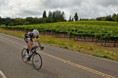 Bike around downtown Sonoma then visit Ravenswood, where you can taste the amazing zinfandels only sold at the winery. Then feast on the duc...