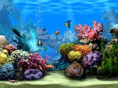 Free 3D Moving Screensavers | free moving images free moving images free moving images free