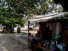 #magiaswiat #vrindavan #matura #podróż #zwiedzanie #indie #blog #świątynie #krishna #gopi #aszram #ogrody #jamuna #drzewogopi #mandir #kund #szpitalayurwedy #ghaty rangnath #bhagavan #rangaji #iscon #balaram #madanmohanji #govinddev# bihari Mandir, Krishna, Pergola, Outdoor Structures, Patio, Outdoor Decor, Blog, Home Decor, Decoration Home