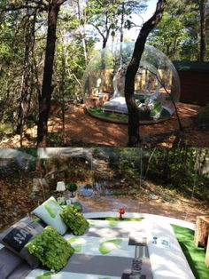 Atrrap' Reves Hotels in France are actually habitable and eco-friendly plastic bubble  domes built using recyclable materials to create interactivity with nature.