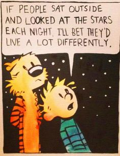 If people sat outside and looked at the stars each night, I'll bet they'd live a lot differently. #calvinandhobbes