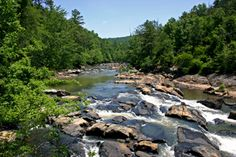 Nov. 17th is Take a Hike Day... how about the trails at Sweetwater Creek State Park in Lithia Springs GA