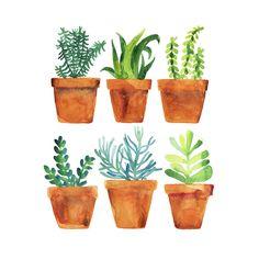 Home garden Art Print by Alexandra Dzh   Minted