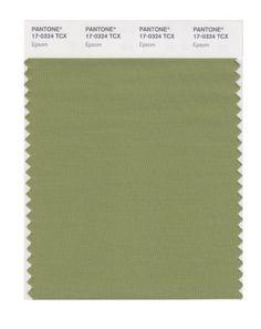 PANTONE SMART 17-0324X Color Swatch Card, Epsom Pantone https://www.amazon.com/dp/B004O7A3FW/ref=cm_sw_r_pi_dp_x_Nd6gybWM06AVC