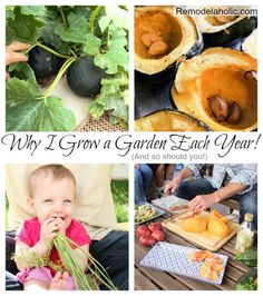Why we grow a Garden