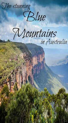 A must see detestation in Australia is the Stunning Blue Mountains. One top Australia adventure is Hiking in the Blue Mountains. Just outside of Sydney is the stunning Blue Mountains. From the big city, head towards Katoomba where you will be enamored wit Brisbane, Melbourne, New Zealand Travel, Mexico Travel, Great Barrier Reef, Visit Sydney, Reisen In Europa, Australia Travel, Australia 2017