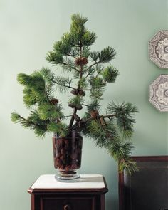 This simple arrangement will fill your home with the aroma of a winter walk in the woods.
