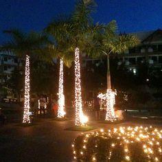 ChristmasなPool2 #philippines