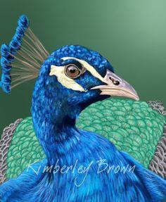 Peacock by ~kimi4eva on deviantART