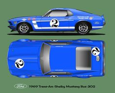 1969 Shelby Mustang 302