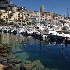 #PortHercule #Monaco #Montecarlo #port кристально чистая вода в порту, и зашкаливающее количество яхт ! #yachts #sea #mare #яхты #кораблики #рыбки by nata_cosmetolog34 from #Montecarlo #Monaco