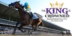 American Pharoah is Unanimous 2015 Horse of the Year – NTRA