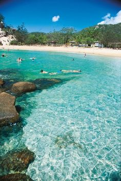 Snorkeling at #Alma Bay in #Queensland, #Australia