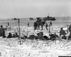 """German prisoners of war in a barbed-wire enclosure on """"Utah"""" Beach, 6 June Note the group of African-American Soldiers in the near center distance, """"Sherman"""" tank (with name """"Delphia"""" on its side) beyond them, and stranded on the beach behind the tank. Battle Of Normandy, D Day Normandy, Normandy Invasion, Normandy France, Utah, Us Marines, D Day Photos, Ww2 Photos, D Day Invasion"""