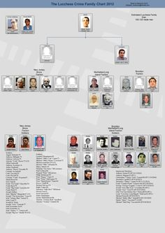 Lucchese Crime Family Leadership Chart - New York Mafia
