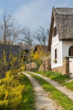 Ház a Balaton partján. Central Europe, Europe Travel Tips, Old Pictures, Historical Photos, Croatia, Countryside, Travel Inspiration, Greece, Travel Photography