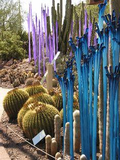 Chihuly Sculpture at Phoenix Botanic Garden