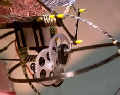 Graham's Ornithopter