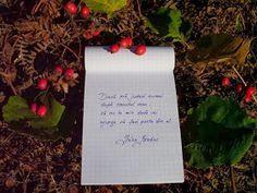 IRINA BINDER - Insomnii: Citate - Irina Binder Binder, Life Quotes, Gift Wrapping, Motivation, Blog, Gifts, 8 Martie, Insomnia, Romantic Sayings