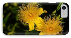 http://fineartamerica.com/products/floral-fireworks-nancy-spirakus-iphone7-case-cover.html