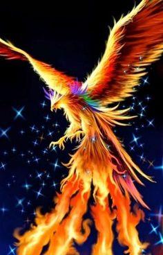 Gothic Fantasy Art, Fantasy Art Women, Beautiful Fantasy Art, Fantasy Artwork, Phoenix Artwork, Phoenix Wallpaper, Phoenix Images, Mystical Animals, Mythical Creatures Art