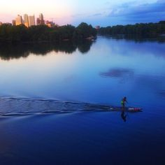 Someone is making waves in the deep blues of Austin's TownLake.